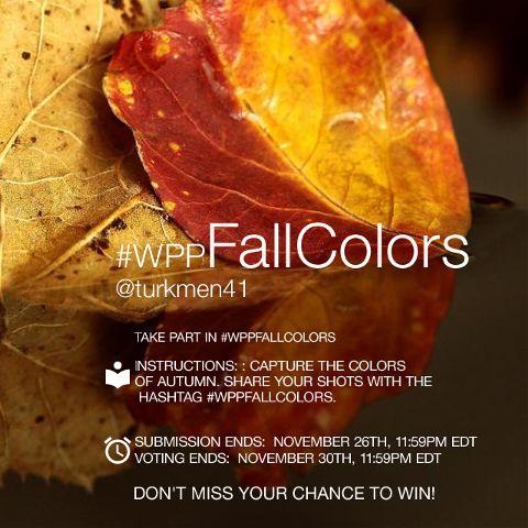 contest photography fallcolors autumn