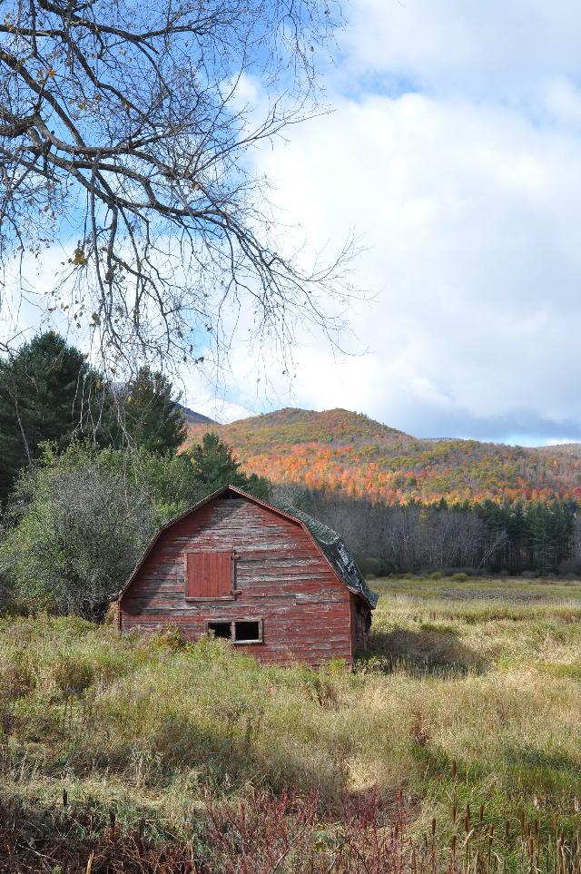 #autumn #abandoned #barn