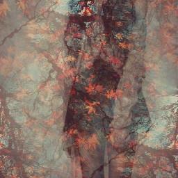 autumn nature tumblr