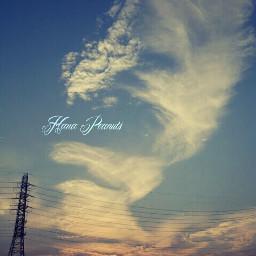写真撮ってる人と繋がりたい すまほ写真ら部 青空 空 夕日