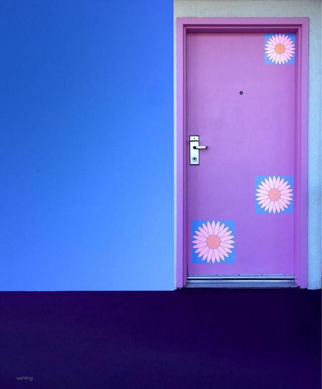 @tuesday1 #ipictureyou #HighContrast #colorblock #blueskyandpink #colorful