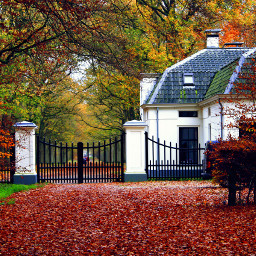 autumn nature outdoors photography color colorful white house building tree trees landscape scenery woods gate fence fall
