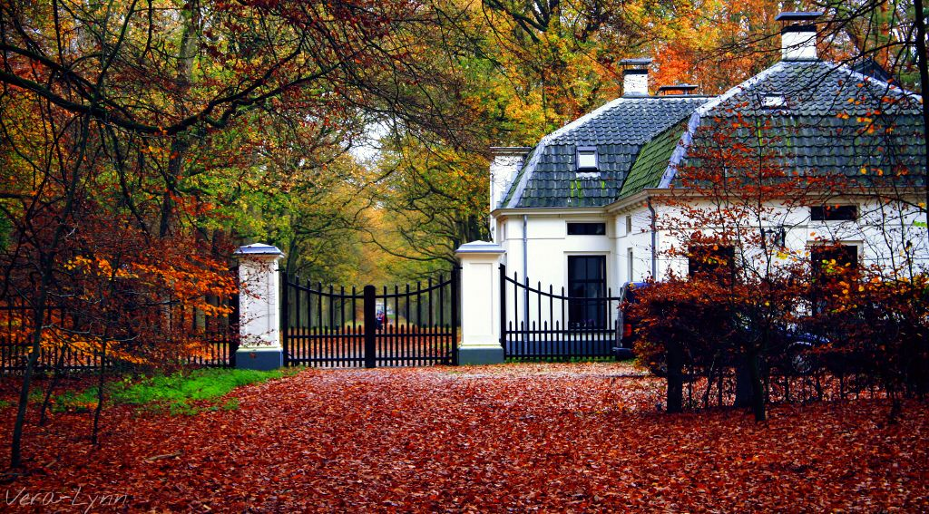 Happy New Week Everyone!🙋  #autumn  #nature #outdoors #photography #color #colorful  #white  #house #building  #tree #trees  #landscape  #scenery  #woods #gate #fence #fall
