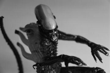 alien ripley movie fan photography