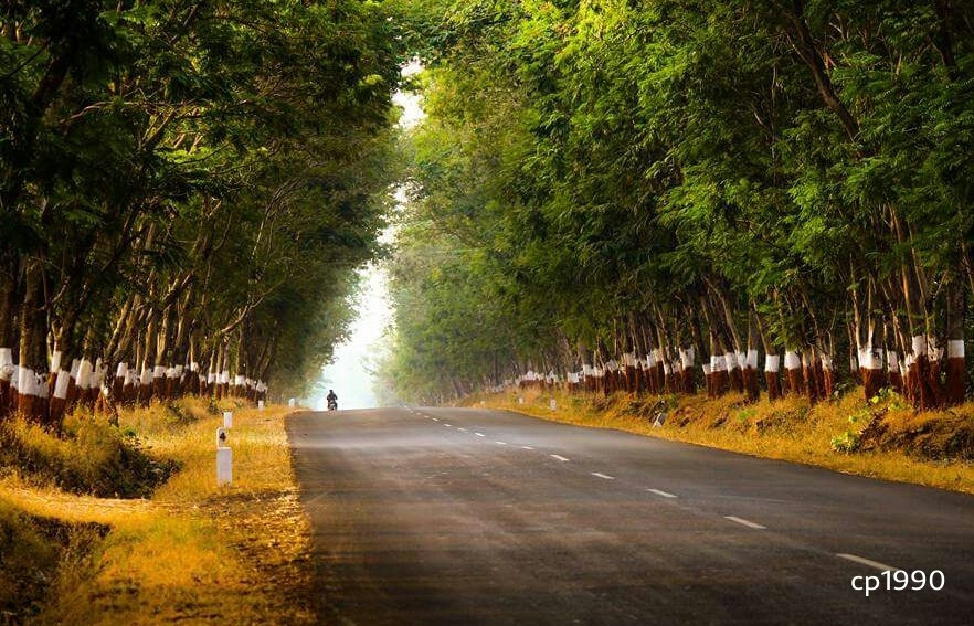 I'm coming home I'm coming home Tell the world I'm coming home Let the rain wash away all the pain of yesterday I know my kingdom awaits and they've forgiven my mistakes #road  #travel #nature #colorful
