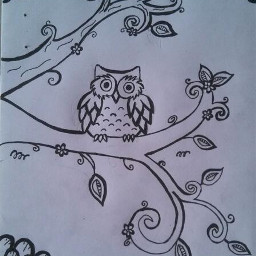 owl flowers trees noperfect