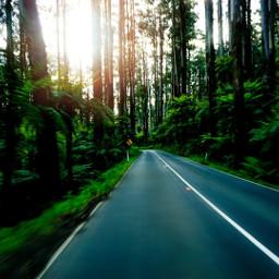 melbourne mountain passengerphoto road travel