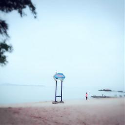 interesting beach nature