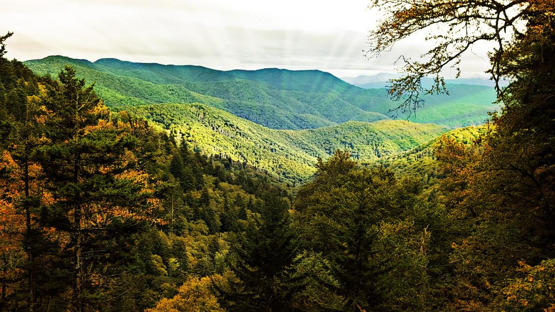 The beautiful Great Smokey Mountains.