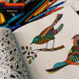 colorful colorsplash freetoedit pencilart popart