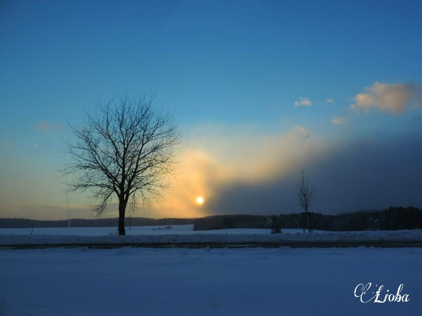 #snow #winter #Deutschland #photography #nature