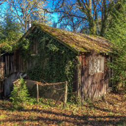 stillness freetoedit overgrown deserted abandoned