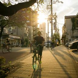 japan tokyo nippori yanaka cyclist