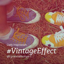 dailyinspiration vintageeffect