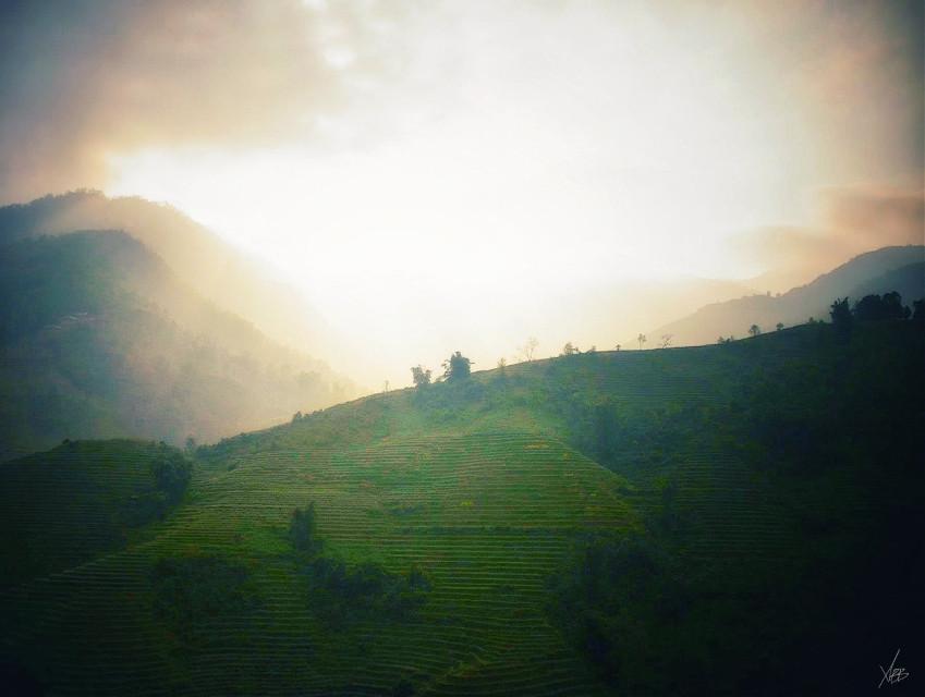 North Vietnam ... #nature #rizieres #panorama #green #culture #Sapa #north #vietnam #oldphoto #2013
