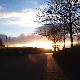 sun sunset jylland denmark nature