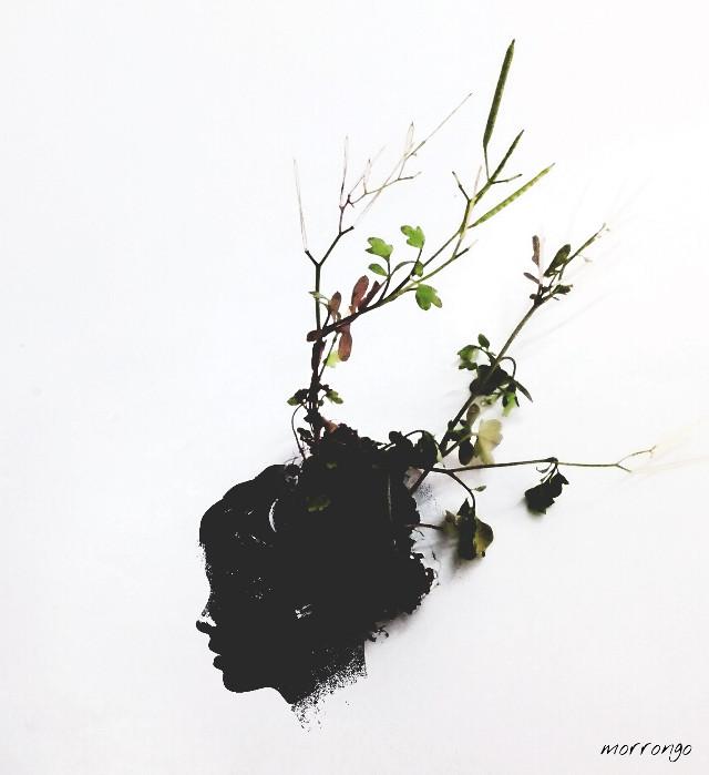 #minimal #freetoedit #photography #artistic #flower #oldphoto #keepitsimple #emotions #fantasy