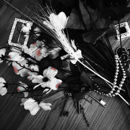 flowerarrangement blackandwhite colorsplash