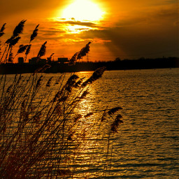 nature photography sunset germany place