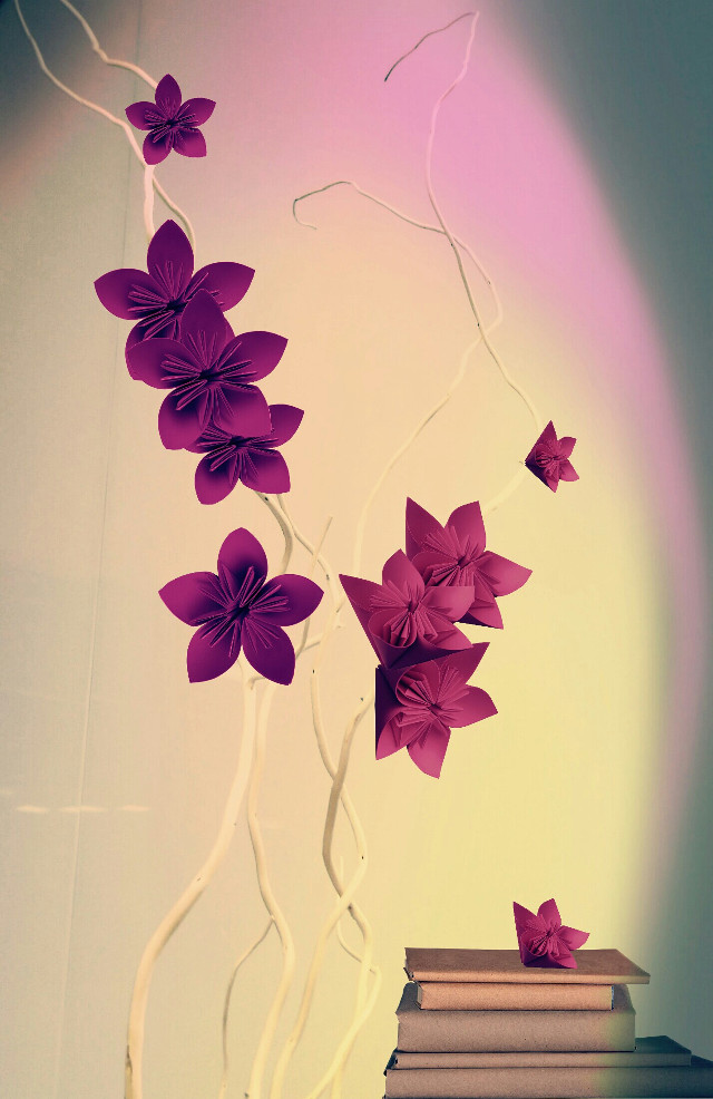 #FreeToEdit   #background  #flowers  #light   #myedit #flower #clipart #minimalism #minimal Photo by  @mysterous-unicorn