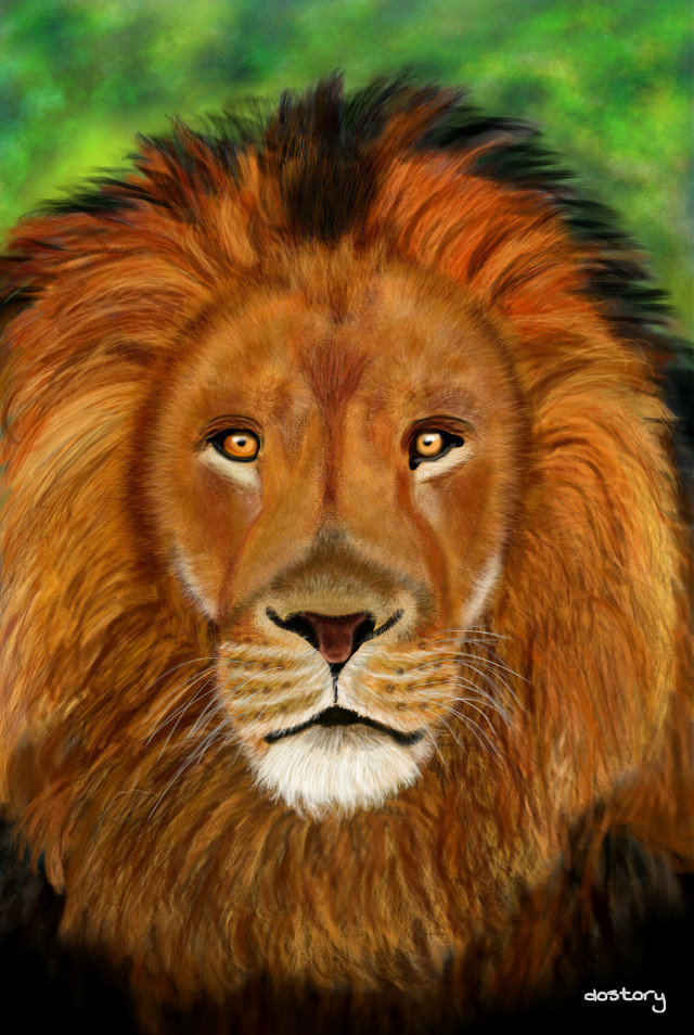 #wdpzooanimals #drawing #digitaldrawing #lion #petsandanimals
