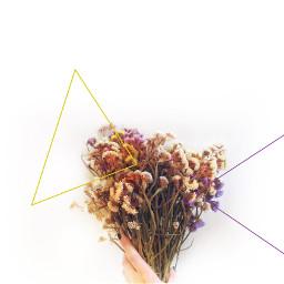 freedom flowers triangles minimal minimalmood art colors comunity