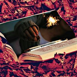 ftesparkler book leaves light