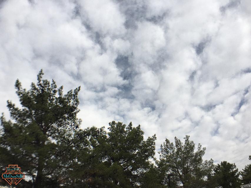 #wideangle #MeOwnSelf #cloudsandsky #cloudsandskyandtrees #skyandtrees #nature