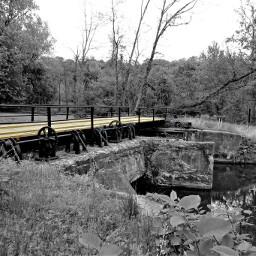 bridge outdoors nature blackandwhite colorsplash